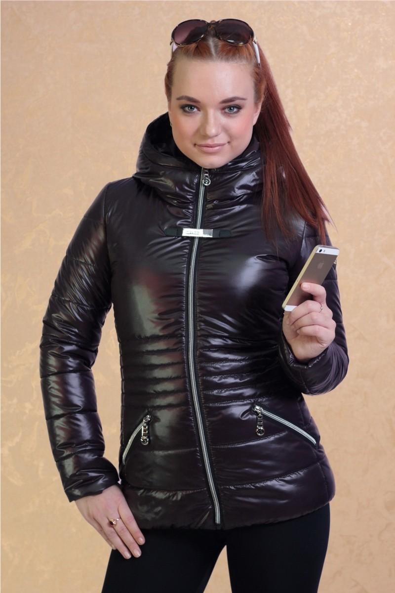 Куртка, Gipnoz
